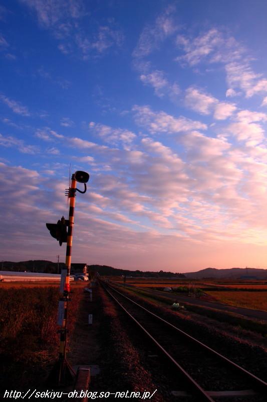 20101127_007.jpg